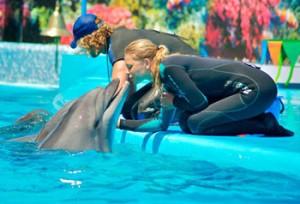 дельфинарий кирилловка1