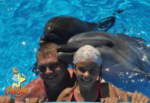 дельфинарий кирилловка2